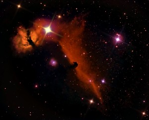 Flame and Horsehead Nebulas by Chris Martel